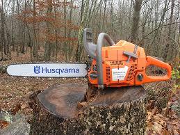 Trädfällning i Hudiksvall